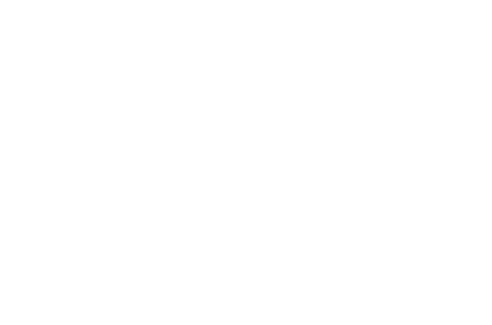 logo AE bianco